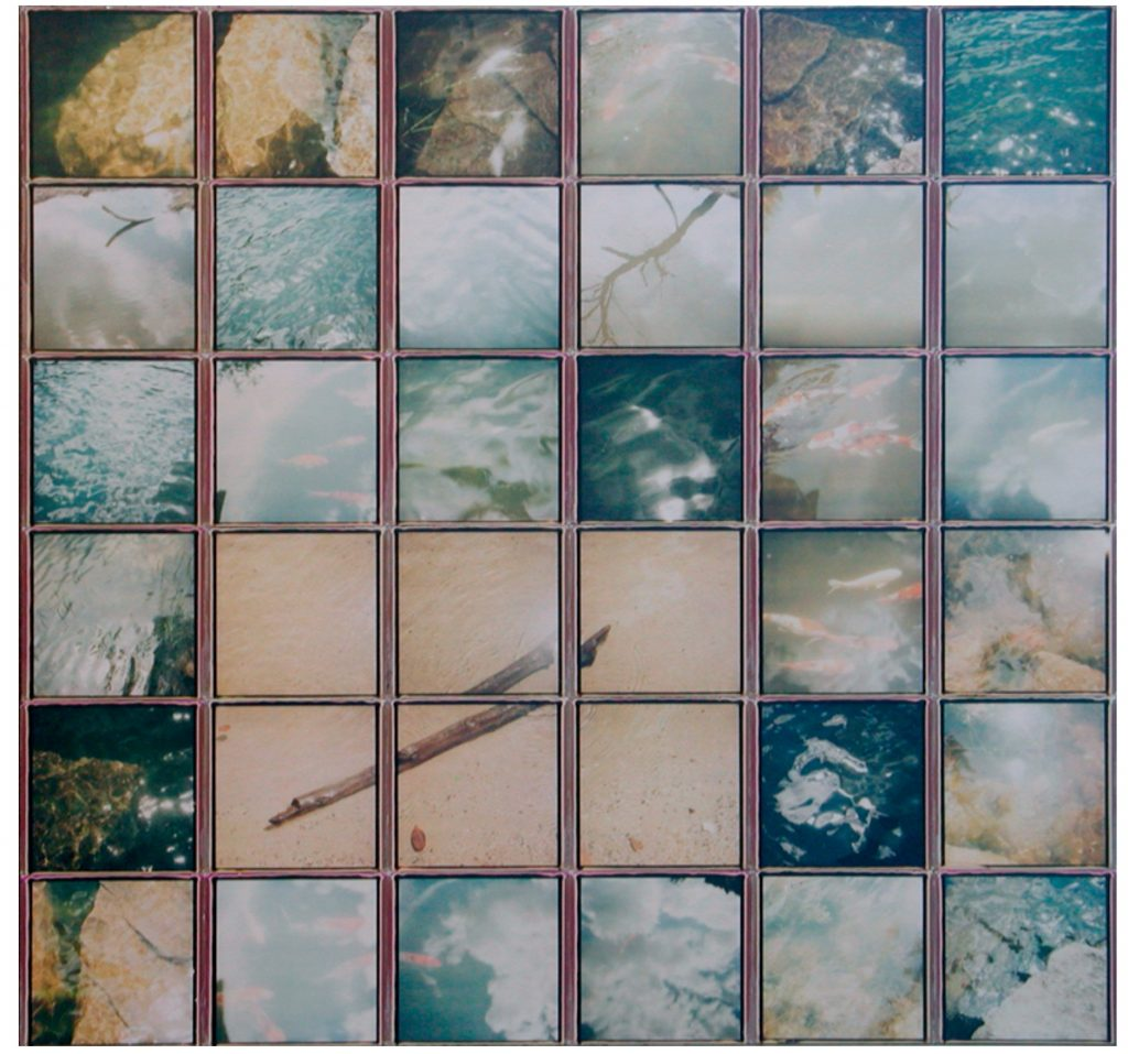 Patrick Winfield, Driftwood (2017), various instant films (Polaroid 600 film, SX70 film) on panel, 22 x 21 inches